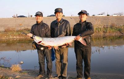 泰兴钓鱼协会秘书长周岗钓起50斤重鳡鱼