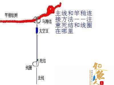 主线和竿稍连接方法 图