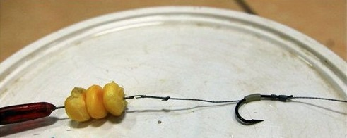 自制(专钓大鱼)新式挂玉米粒的钩组 3