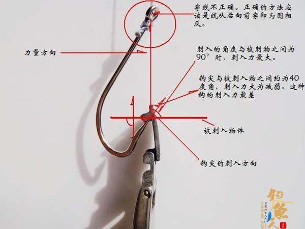 大钩钓大鱼时,鱼钩的绑法 图 钩尖向外的钩子