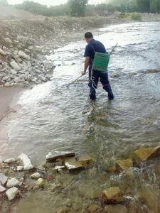 承德男子仅穿橡胶靴水中电鱼 自称用3800伏的电压电鱼,鱼儿翻着肚子