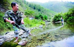 今年陈林民就抓到了十几个偷捕野生石斑鱼的人。