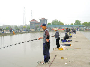 老年钓鱼赛助市民养生