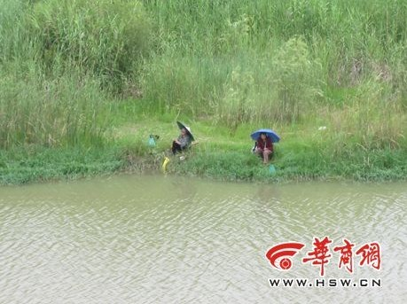 7月渭河进入主汛期 市民河道垂钓很危险