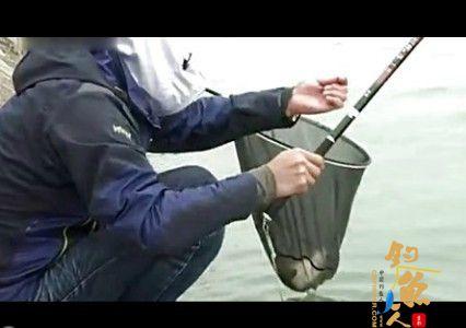 湖南卫视快乐垂钓频道《江湖行》第十七期百变钓技战黄石