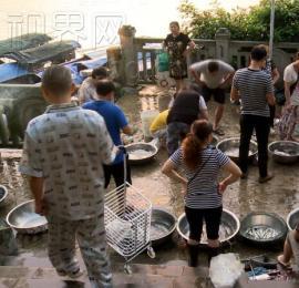 合川三江流域禁渔期宣告结束 ,市民也可以在江河中进行垂钓了