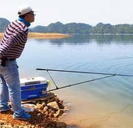 为啥说钓鱼窝子好做,守窝却不容易 打窝子诱鱼
