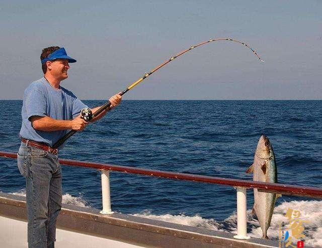 海竿钓鱼技巧串钩钓中,动态诱钓法