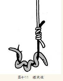 蚯蚓钓鱼用什么打窝,看老钓手用蚯蚓钓鱼的挂钩方法和技巧