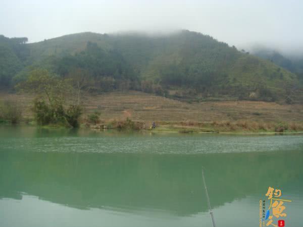 升钟湖山泉水太阳城信誉, 那鱼肚子里面没有黑膜,附升钟湖美景