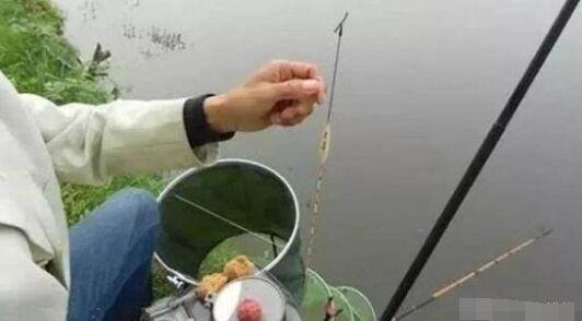 钓鱼调漂很简单,具体的鱼情按照我的方法调钓就可以,保证能上鱼