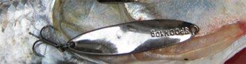 路亚硬饵:汤匙、勺子(Spoon)图文详细介绍