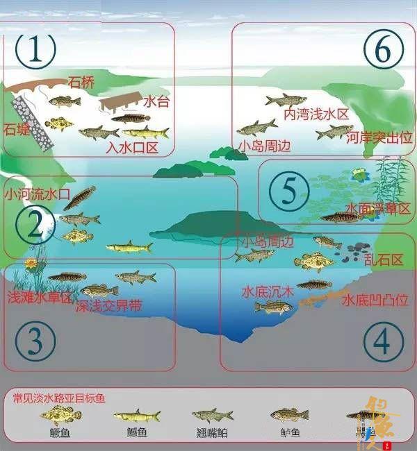 路亚钓场与找鱼标点分析