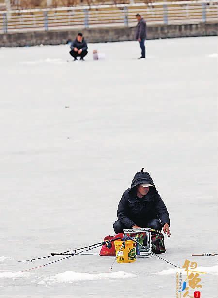 春暖河即开冰上垂钓太冒险