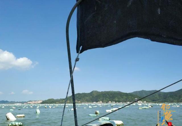 海钓如何选择钓位,原因分析与钓位推荐
