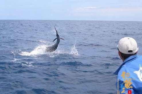 海钓中,船钓常用的钓具的作用和用法简介