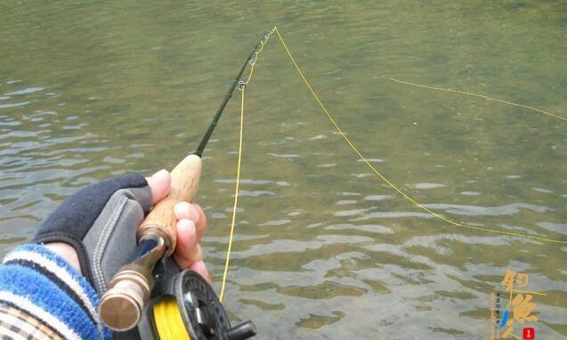 飞蝇钓怎么玩?好钓鱼来教你