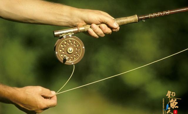 华子鱼的生活习性是什么?钓华子鱼的技巧与路亚
