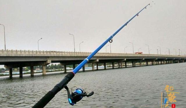 冬天钓蓝刀鱼,要改为钓底,加上这几个路亚技巧