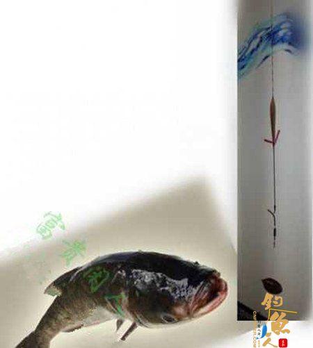 台钓鲢鳙鱼的三种自创调漂方法 图8