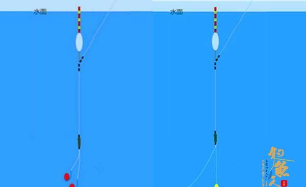 如何调漂,才能做到一饵到底或者双饵到底