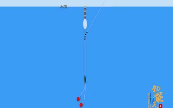 用拉饵钓鱼应该如何调漂?判断双饵到底还是单饵到底