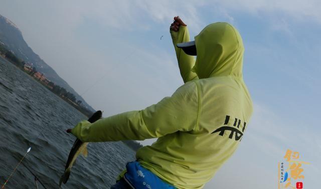 全泳层引钓法,学会了它,真的可以一技钓天下