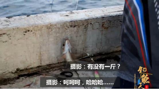 有大有小才是海钓常态,摄影小哥的日常