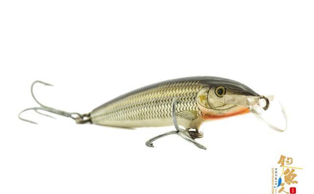 沉水米诺篇概述:如果在沉水米诺入水后不加限制,那么拟饵就会顺势沉入水底。但是当对拟饵进行一定的控制后,就会定在某个水层进行搜索,并且这种拟饵更适合垂钓陌生鱼情和活性好的鱼情
