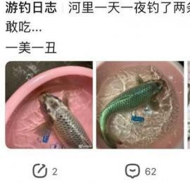"""广东钓鱼人,一天之内在河里钓起两条""""奇鱼"""",土炮古黄金 或为 异种鲤"""